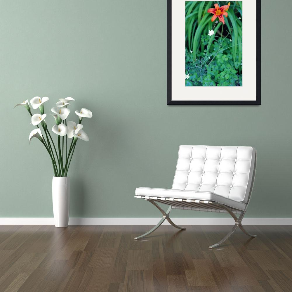 """Daylily with Butterfly Scabiosa Flowers&quot  (2011) by KsWorldArt"