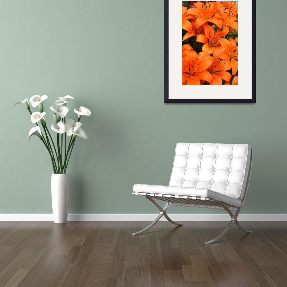 """Bright Orange Lilies&quot  (2010) by CreativeImage"