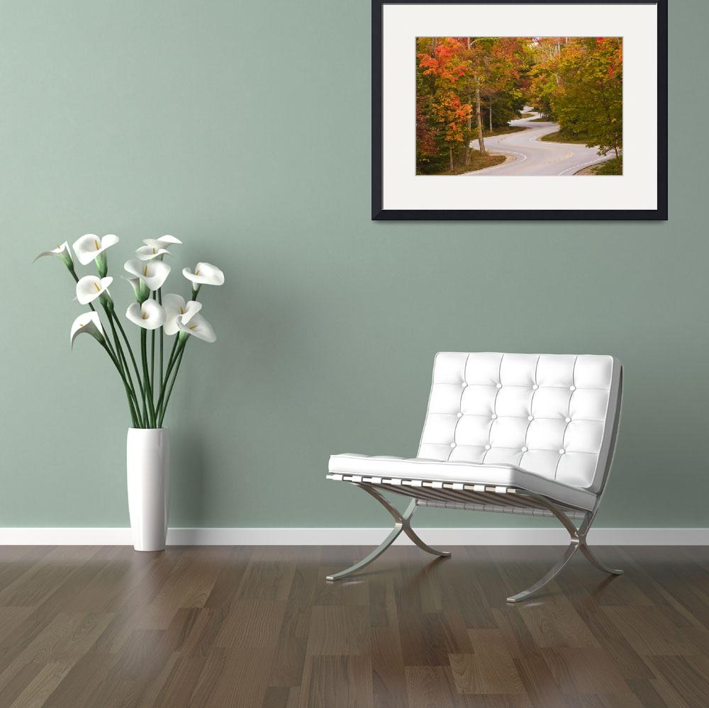 """Winding Road_Orig&quot  (2009) by BeeCreativeDesigns"