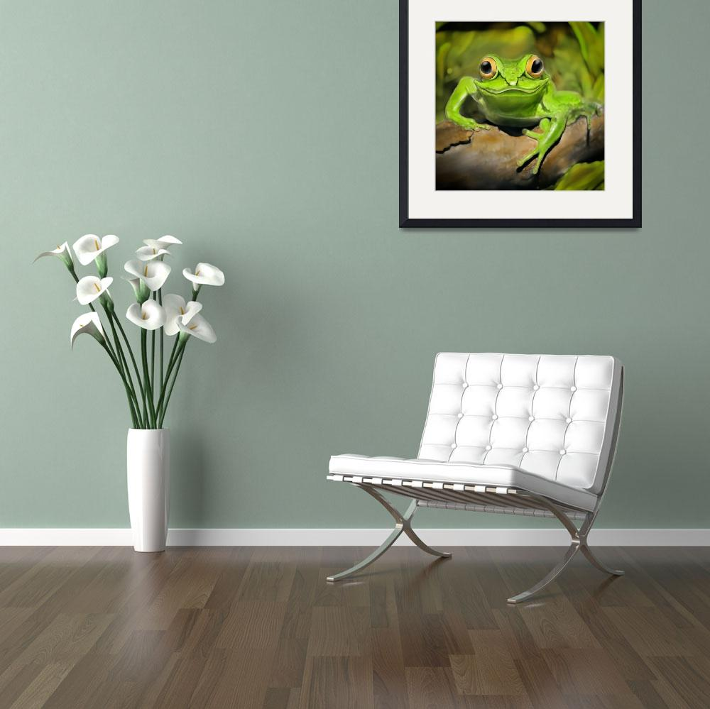 """Little frog&quot  (2016) by photoplace"