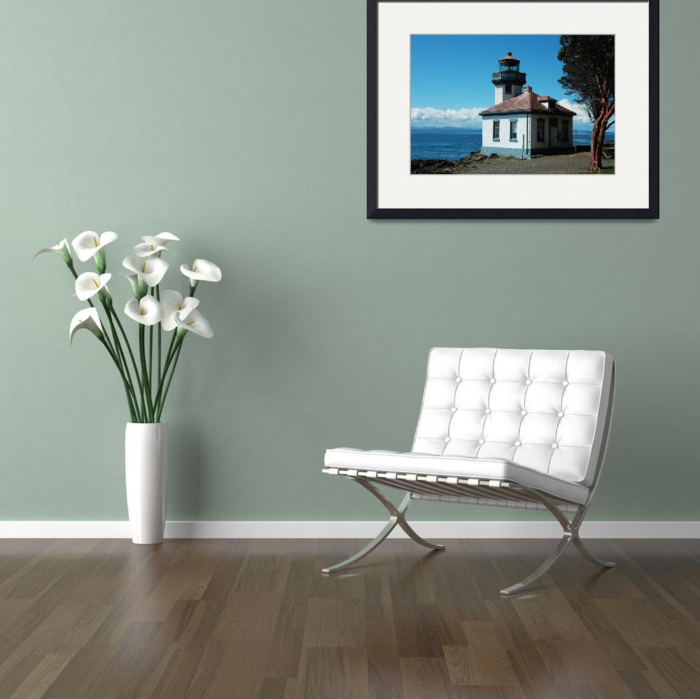"""Lime Kiln Lighthouse - Close Up&quot  (2013) by netbrands"