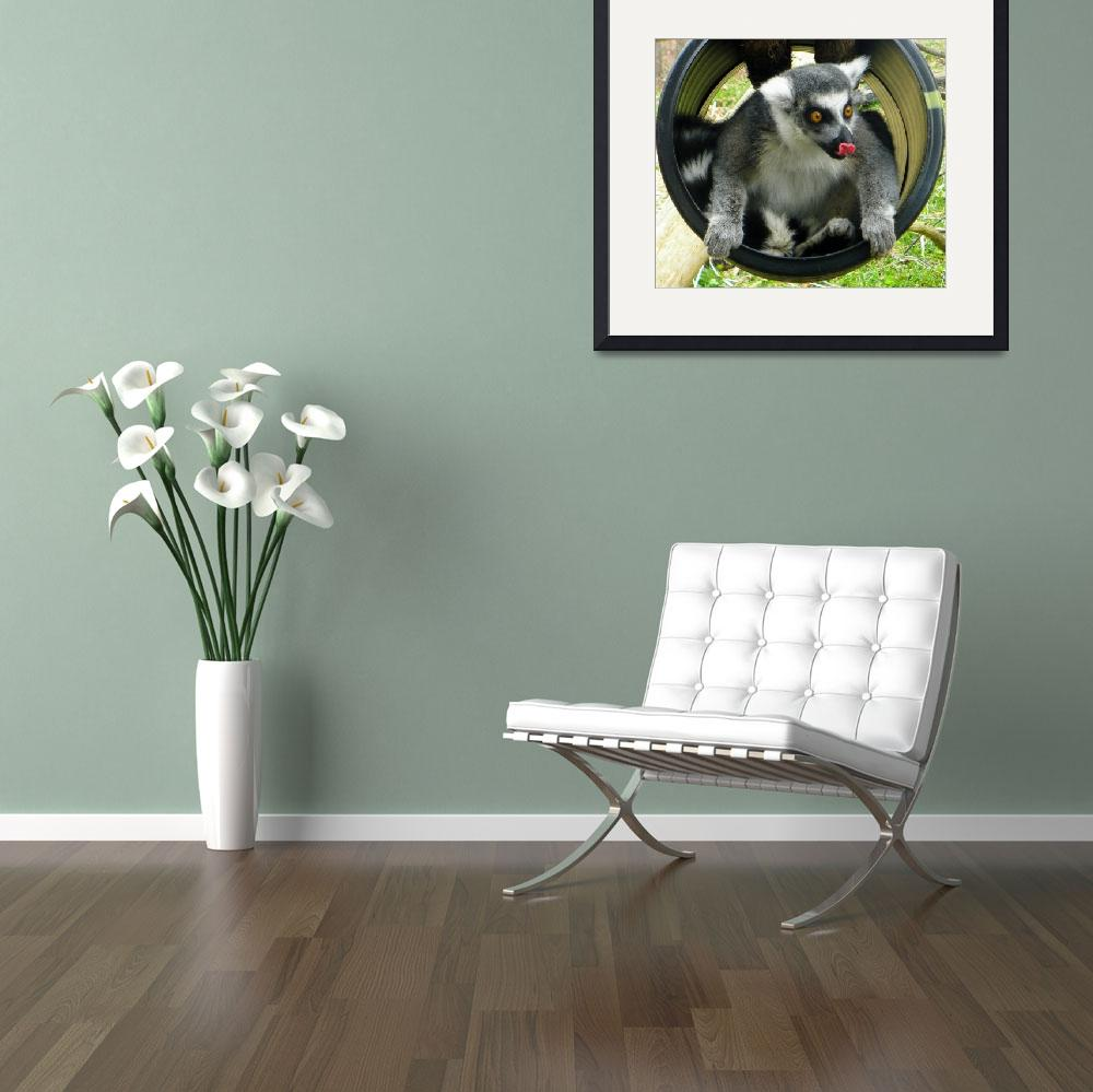"""Lemur Playing&quot  (2010) by SandiOReilly"