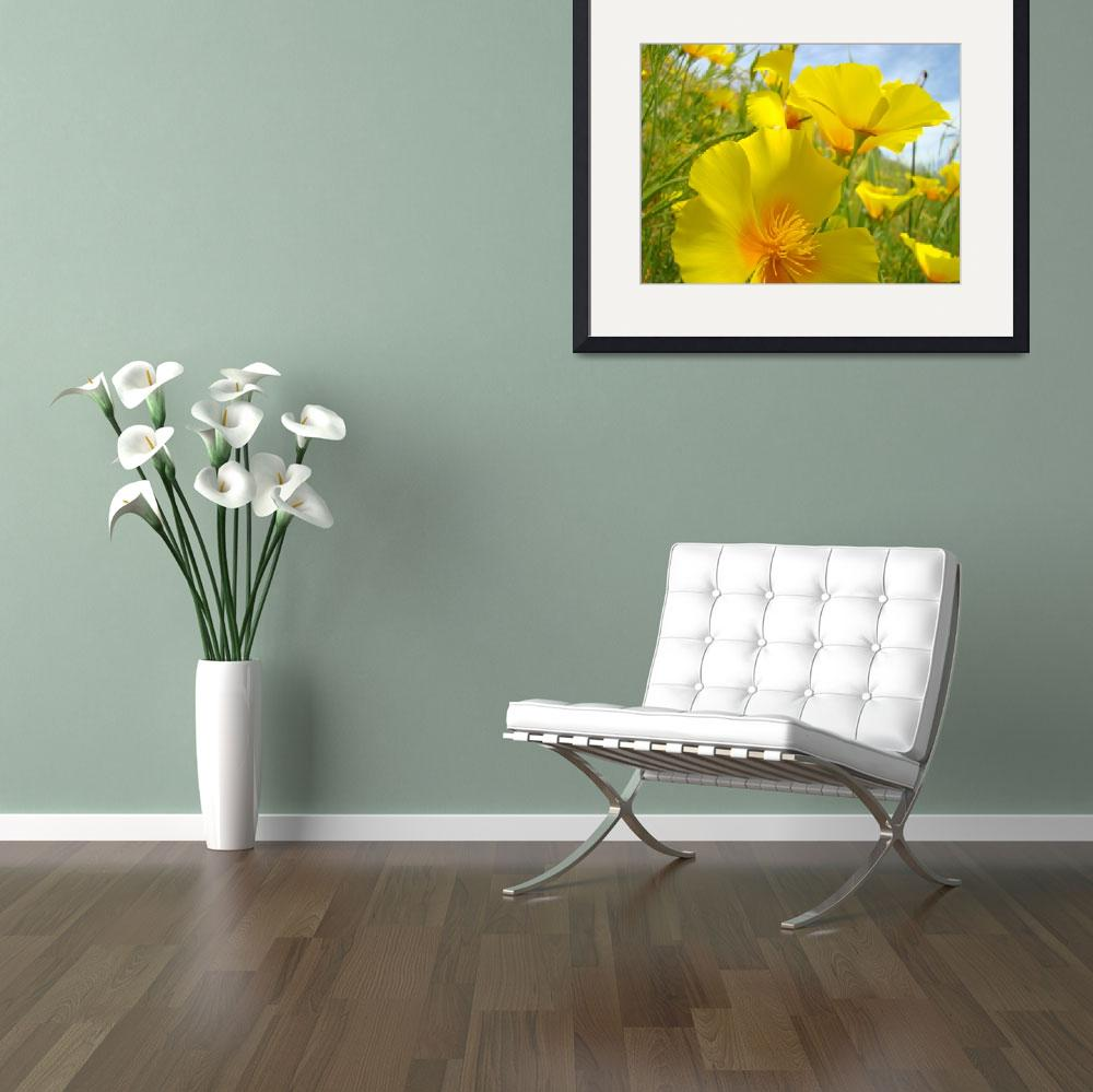 """Poppy Flowers art prints Orange Poppies&quot  (2010) by BasleeTroutman"