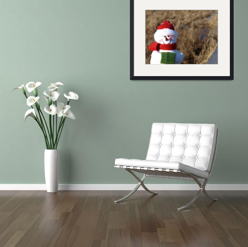 """Snowman waiting for Christmas 7&quot  (2008) by Albertphoto"