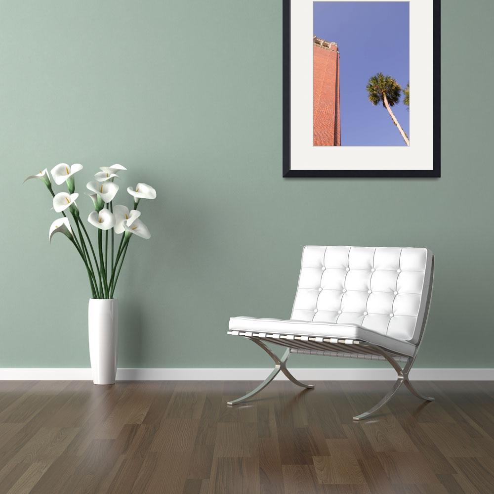 """Century Tower & Palm Tree, University of Florida&quot  by fineartphoto"