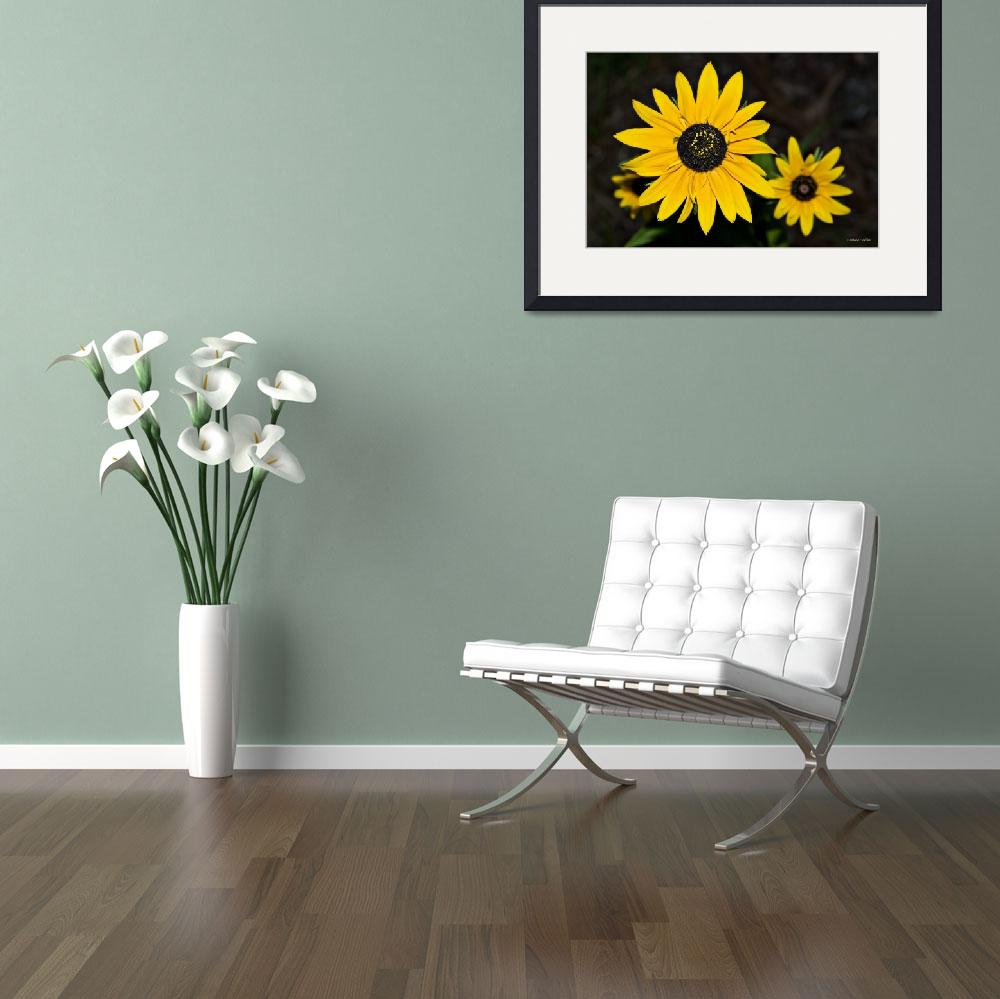 """Large Yellow Daisy&quot  (2009) by TallyAnn"