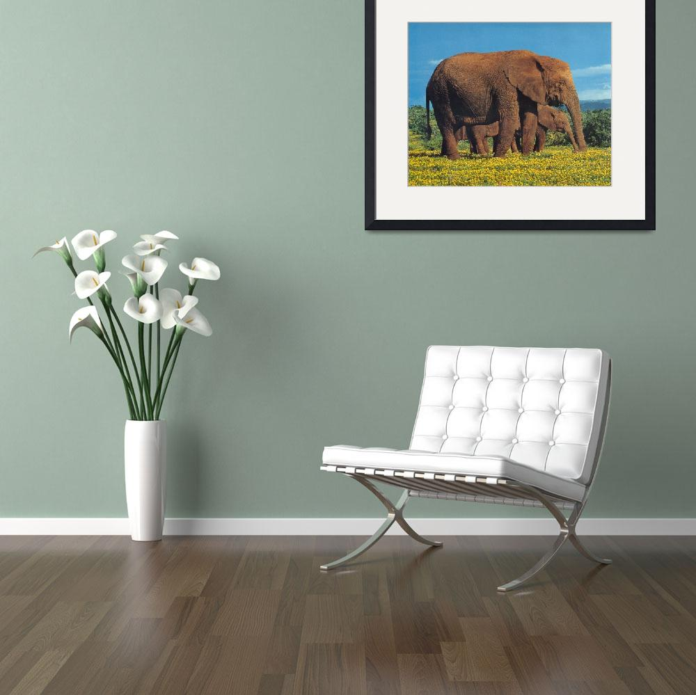 """Elephants in Flower Field&quot  by ArtLoversOnline"