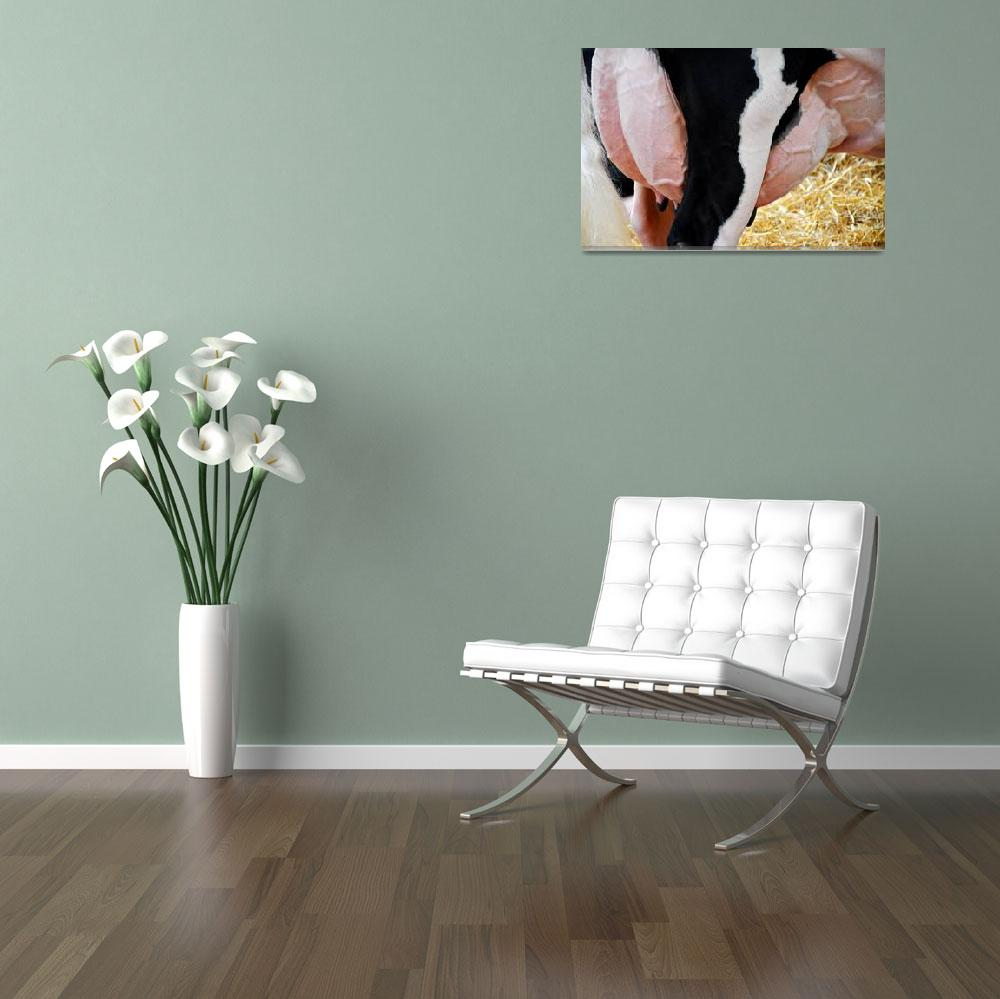 """Holstein Dairy Cow Udder_5037&quot  (2015) by WindmillFarms"