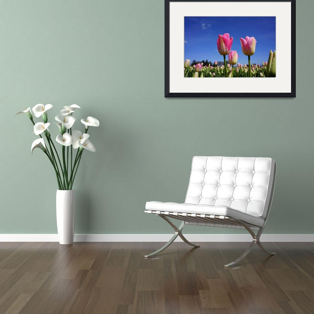 """Tulip Flowers MEADOW art prints Spring Gardens&quot  (2017) by BasleeTroutman"