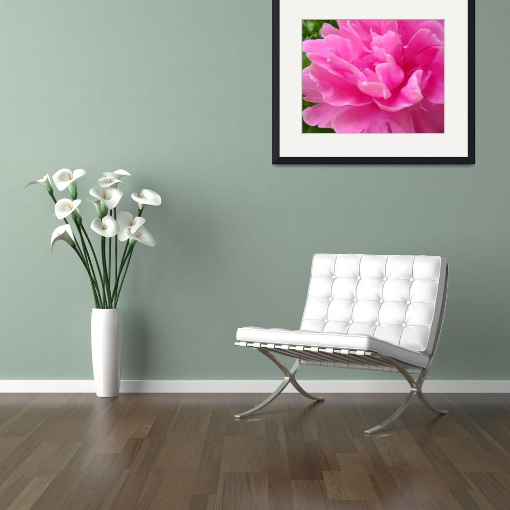"""Pink Peony&quot  (2008) by nikiclix"