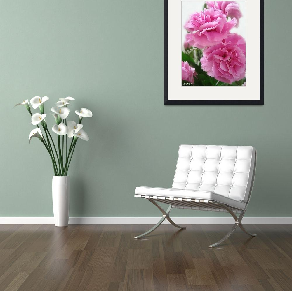 """Pink Carnations 1&quot  (2009) by ChristopherInMexico"