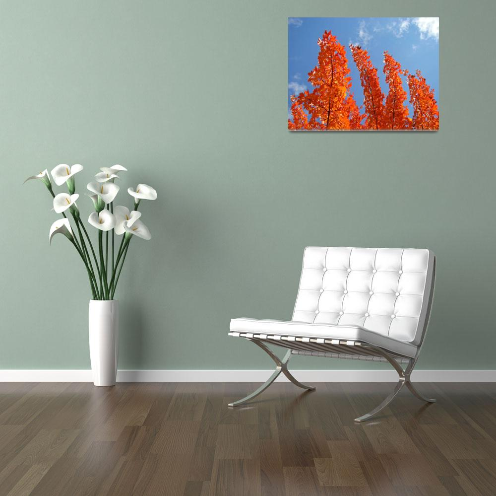 """Autumn Leaves Blue Sky Fall art tree leaves prints&quot  (2013) by BasleeTroutman"