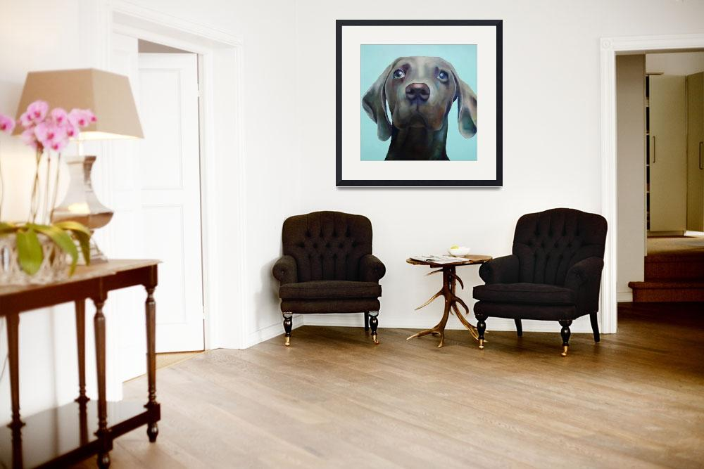 """Little Weimaraner Looking Up&quot  (2012) by houseofjennifer"