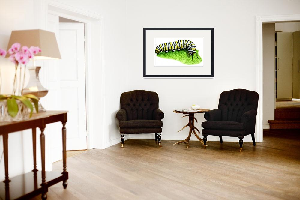 """Monarch Butterfly Caterpillar&quot  (2009) by inkart"