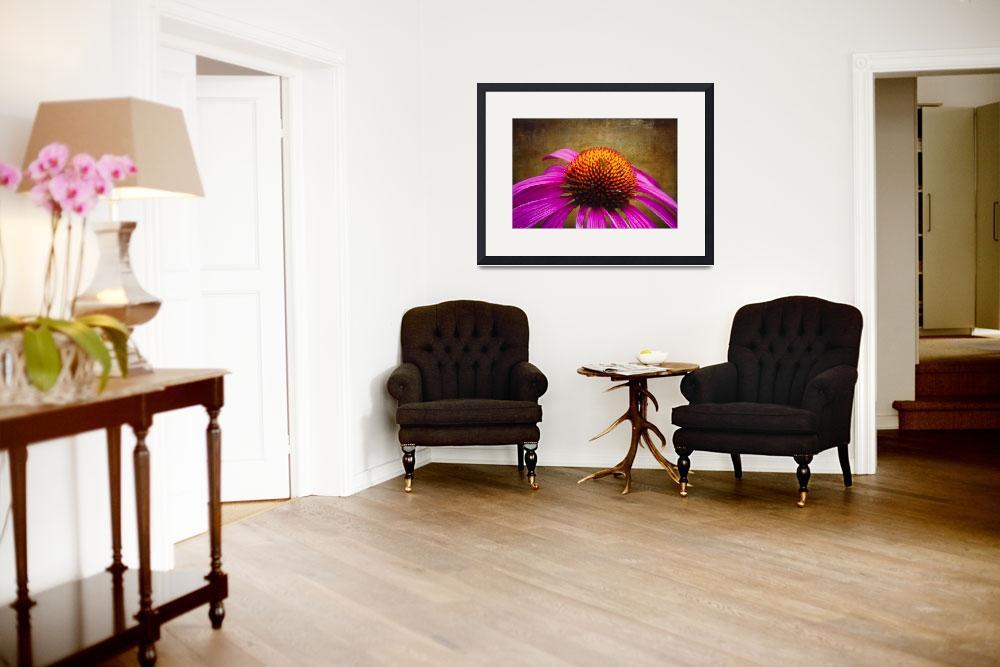 """Purple Coneflower on Canvas&quot  (2012) by George_Oze"