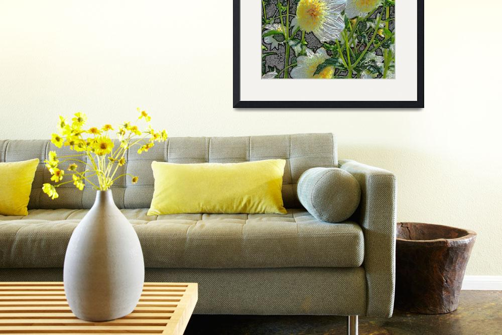 """White and yellow dahlias&quot  (2011) by judithschmidt"
