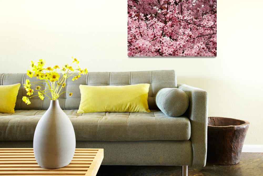 """Landscape Trees Spring Pink Blossoms Art Prints&quot  (2009) by BasleeTroutman"