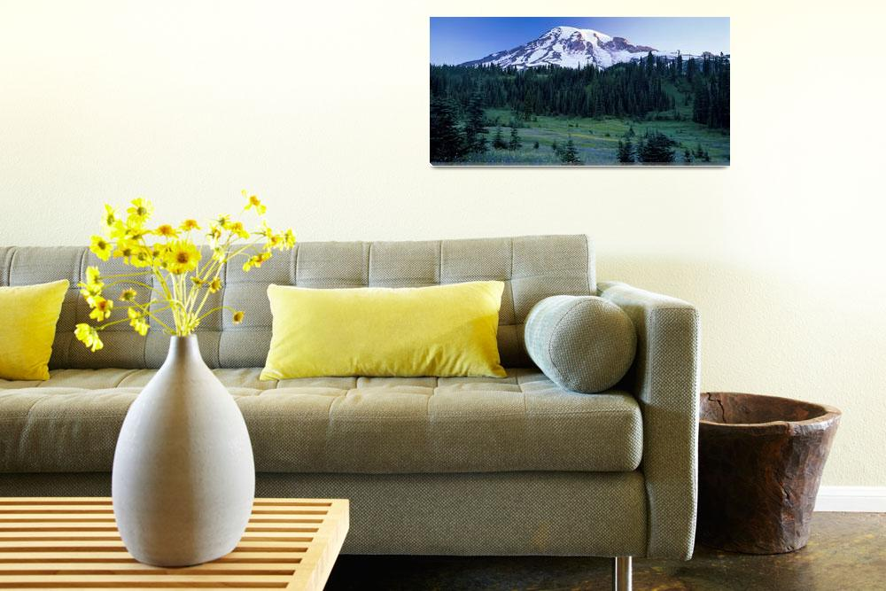 """Panorama of Mount Rainier with wildflower meadow&quot  (2004) by JohnChaoPhoto"