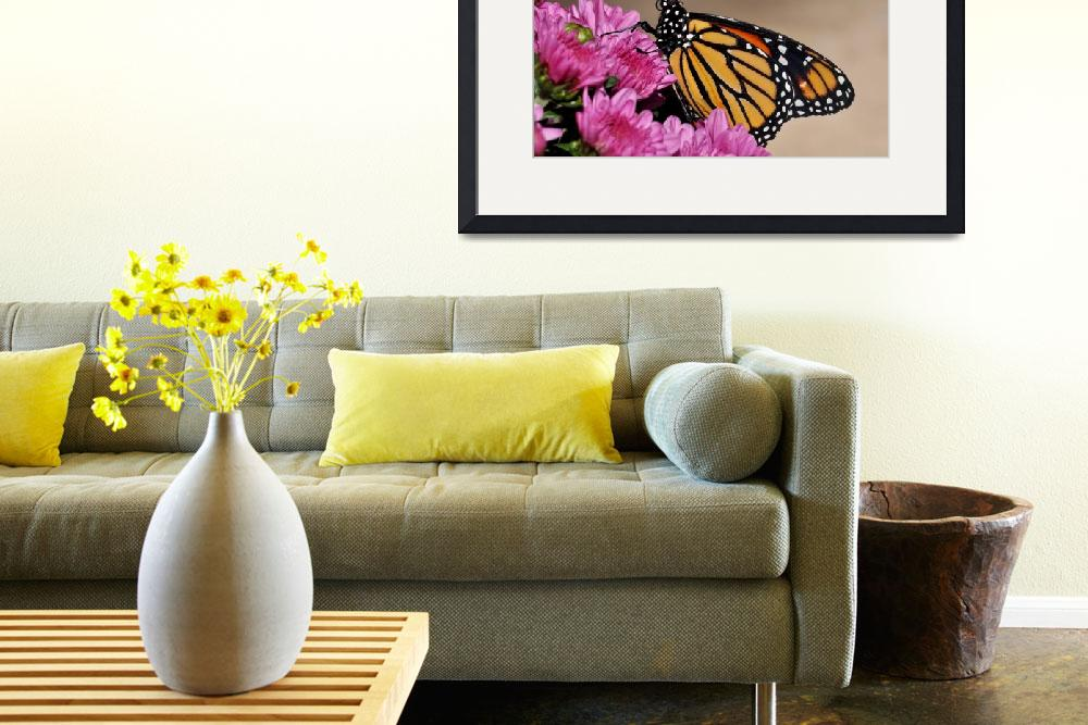 """Monarch and Purple Mums No2&quot  (2010) by evansonart"