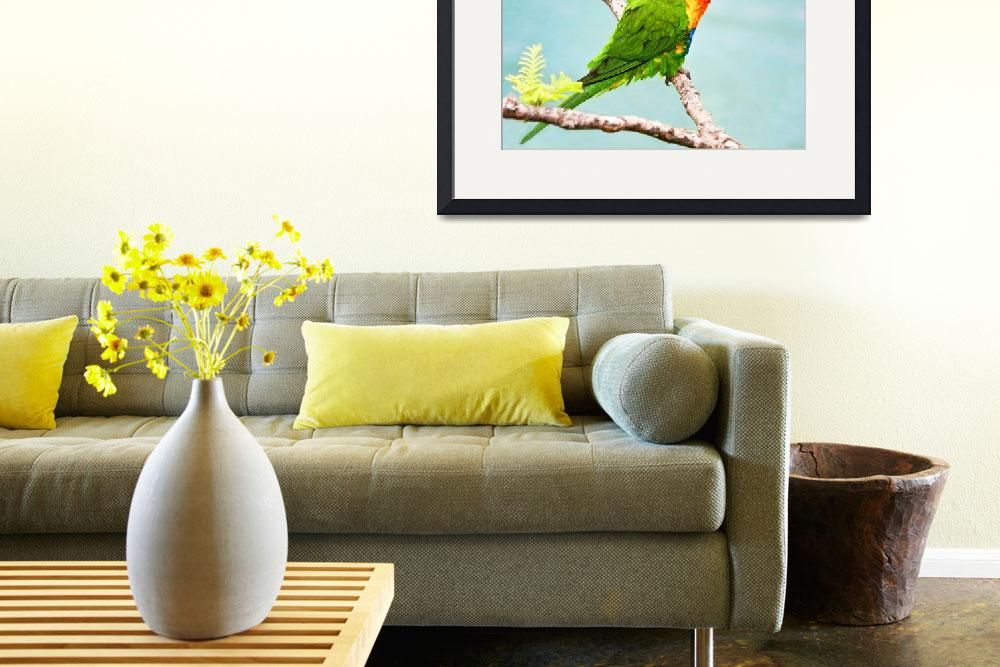 """Green, Blue Lorikeet Bird -Whitsunday, Australia&quot  (2008) by mjphoto-graphics"