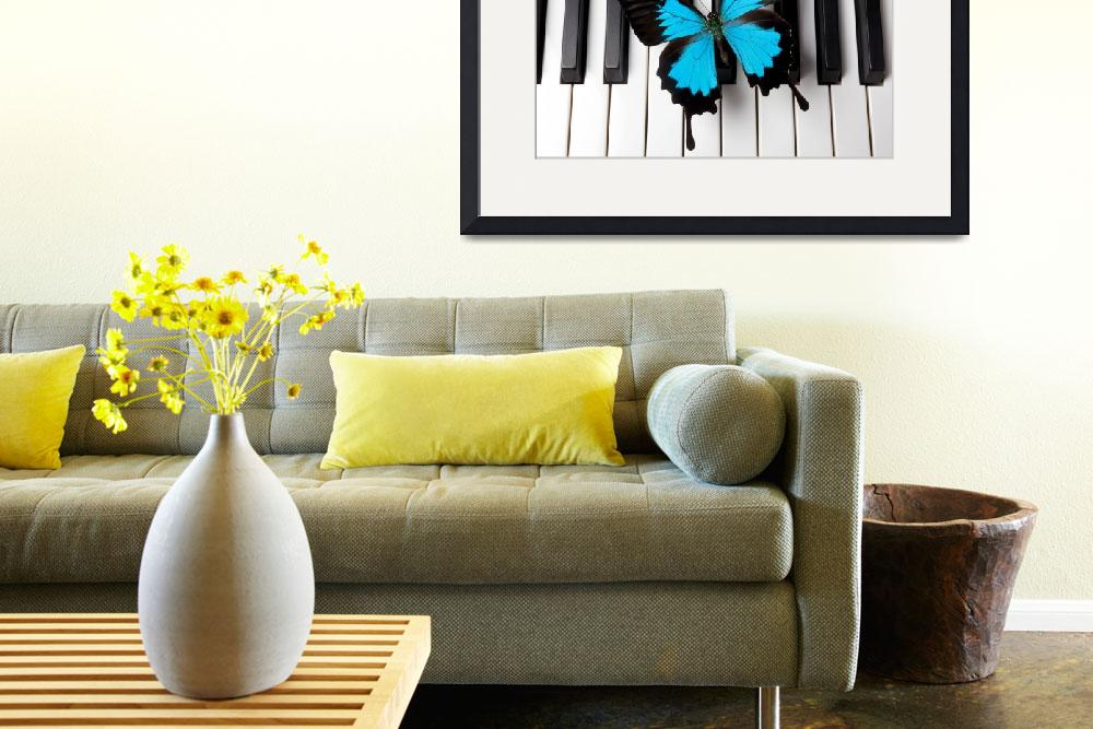 """Blue butterfly on piano keys&quot  (2012) by photogarry"