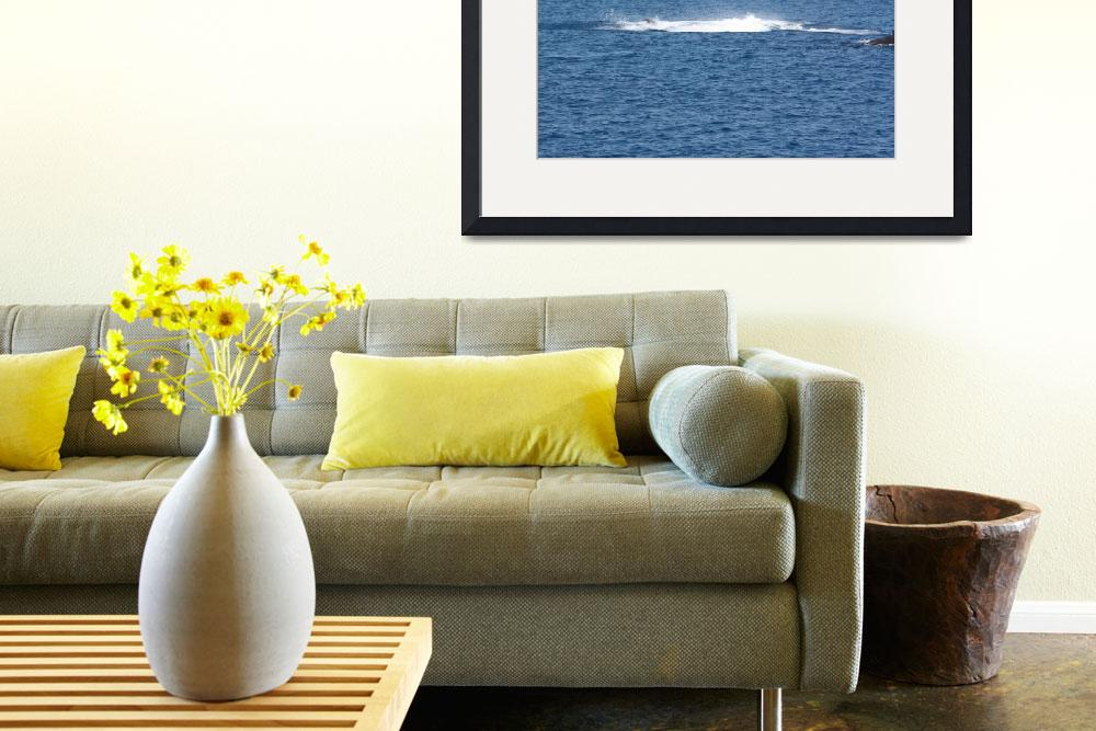"""NaP_ Whale Watching177a&quot  by nevilleprosser"