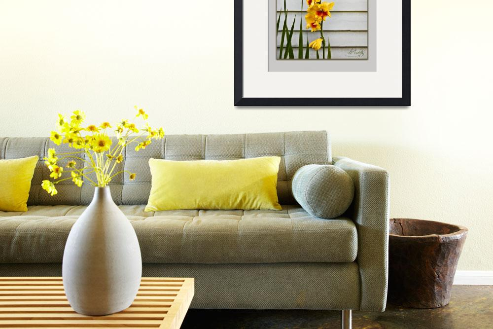 """Yellow Gladiolas&quot  (2009) by dbwalton"