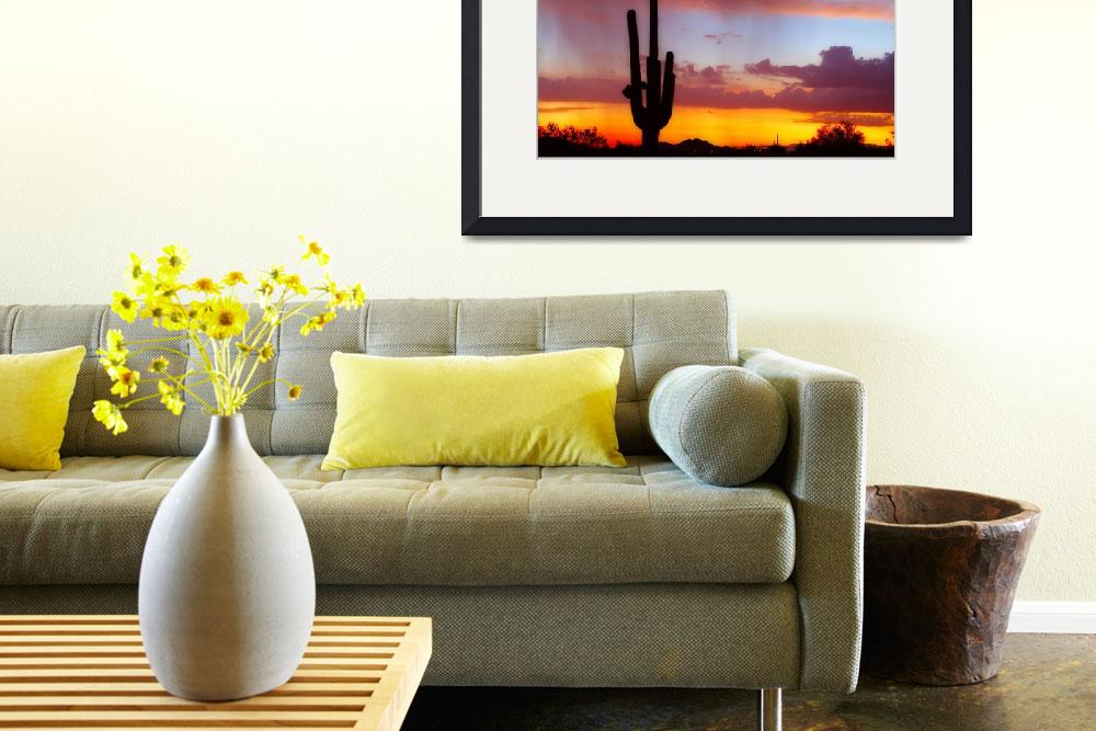 """Lightning  Saguaro Sunset&quot  (2010) by lightningman"