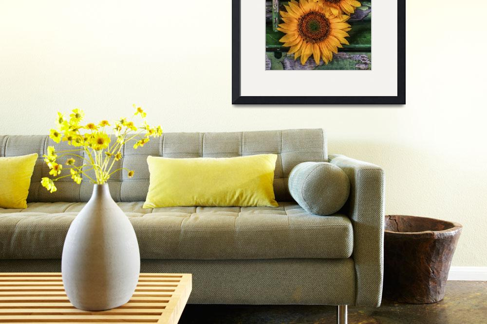 """Sunflower as Still Life&quot  (2012) by jimcrotty"
