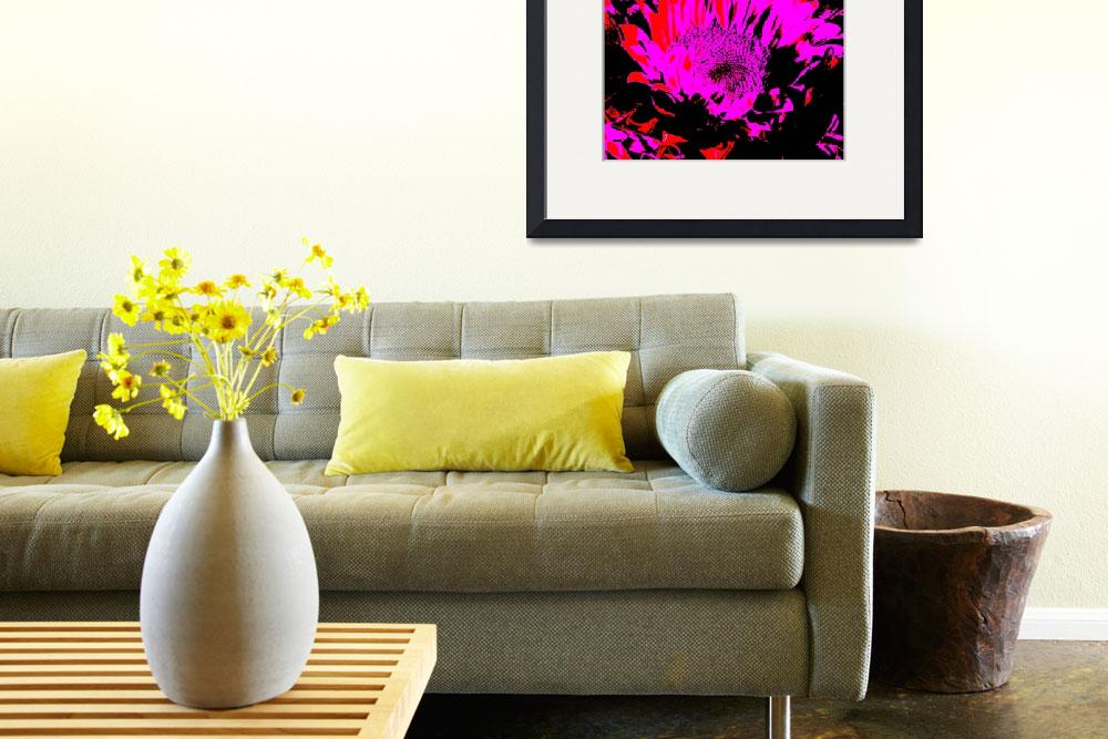 """Sunflowers: Magenta Red Black 0290&quot  by vicki-pix"