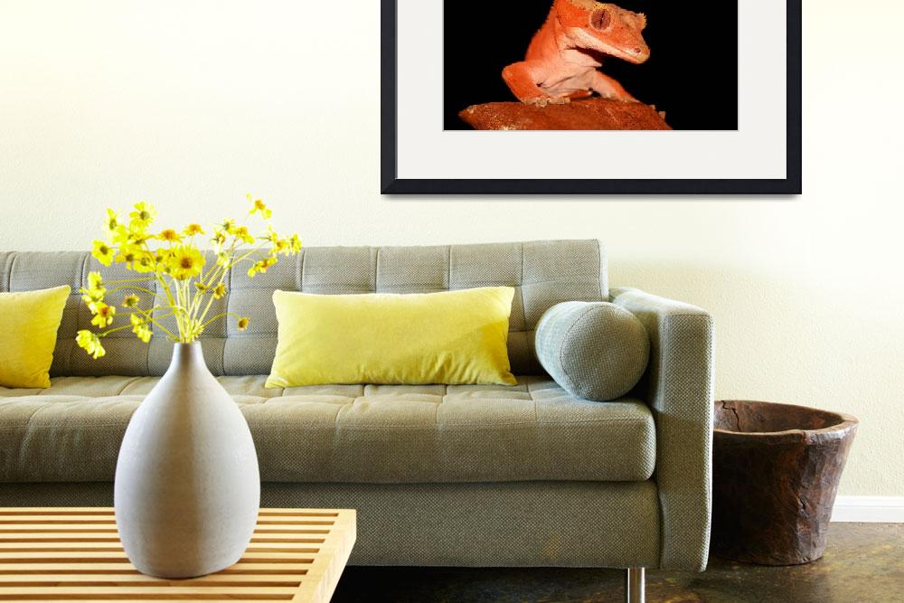 """crested gecko&quot  (2009) by paulhalfmann"