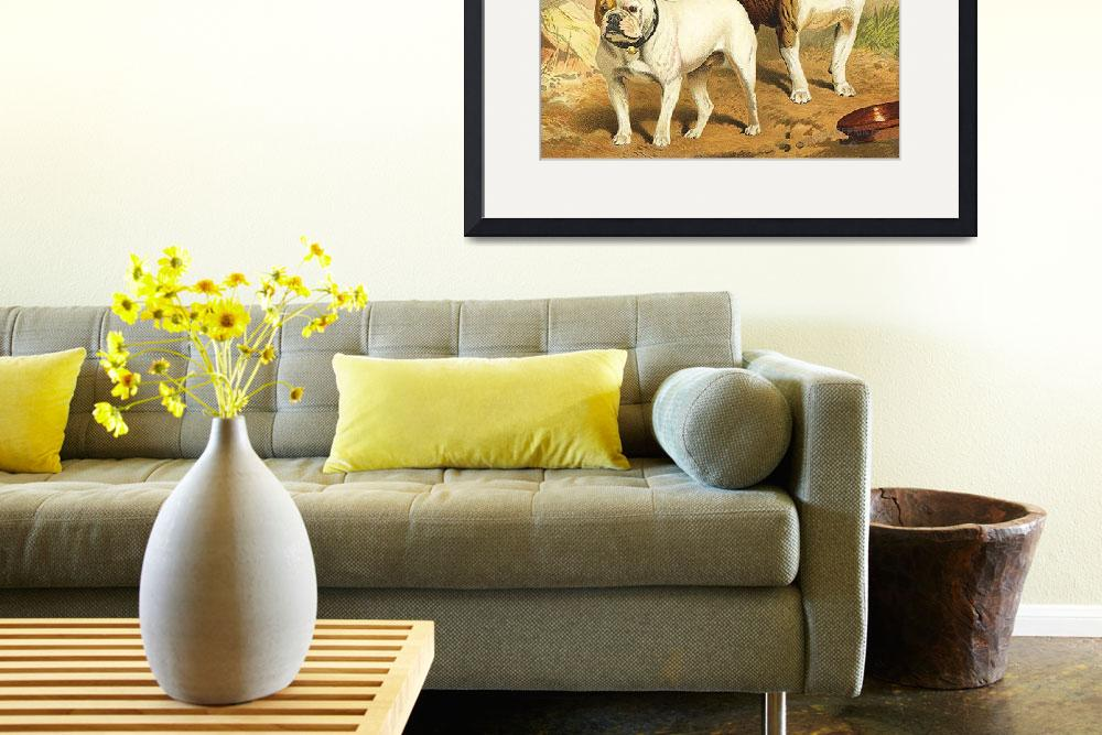 """Vintage Painting of English Bulldogs&quot  by Alleycatshirts"