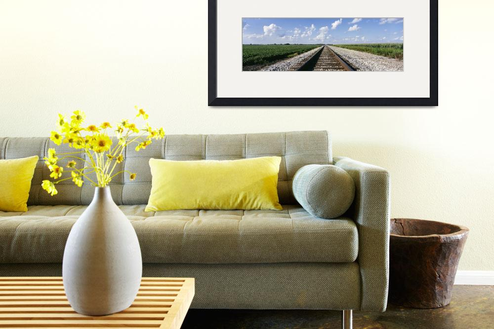 """Railroad Tracks&quot  by Panoramic_Images"