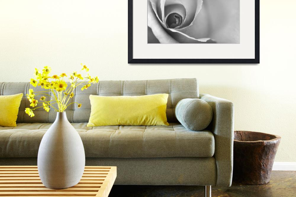 """Romantic Black and White Floral Wall Art&quot  (2012) by NatalieKinnear"