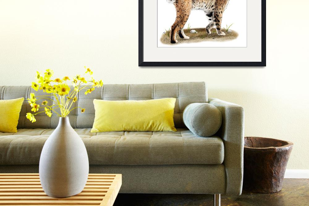 """Bobcat&quot  (2009) by inkart"