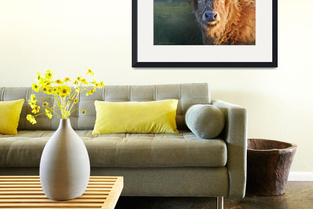 """young highland cow&quot  (2014) by rchristophervest"