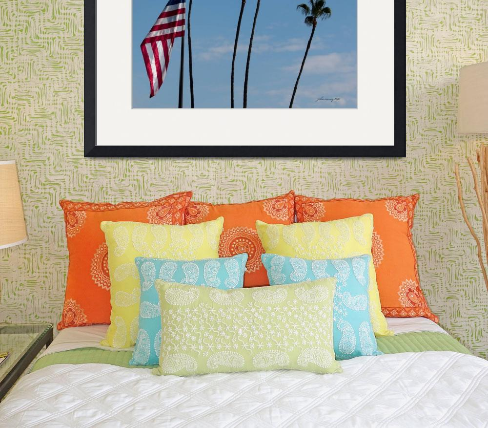 """Old Glory and Palm Trees&quot  (2010) by johncorney"