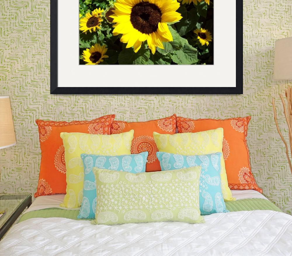 """Sunflowers all around&quot  (2009) by HayleysMom1021"