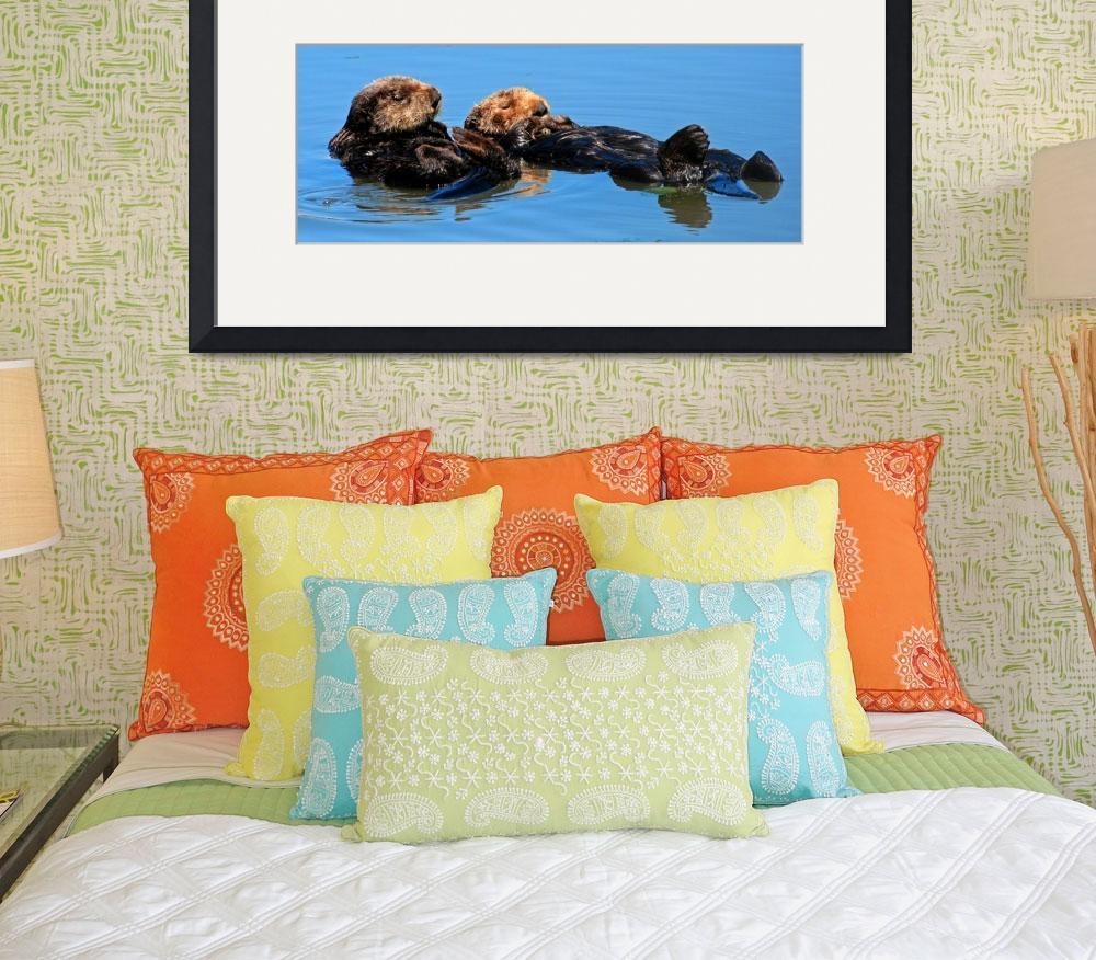 """Sea Otter pair 2392&quot  (2008) by paulhood"