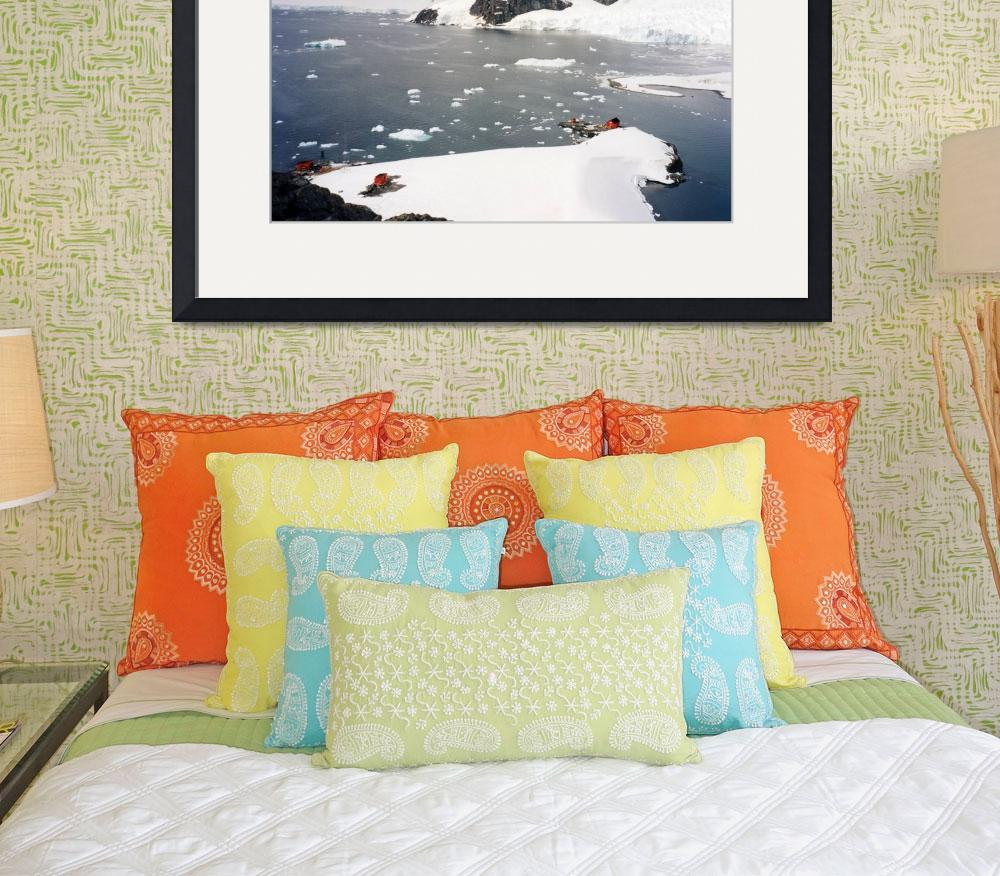 """Paradise Bay Antarctica&quot  by AnnTuck"