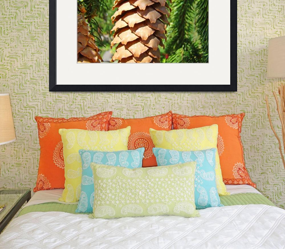 """Golden Pine Cone Fine Art Photography Baslee&quot  (2010) by BasleeTroutman"