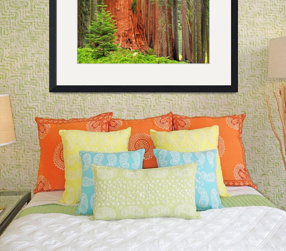 """Sequoia Grove&quot  (2008) by Inge-Johnsson"