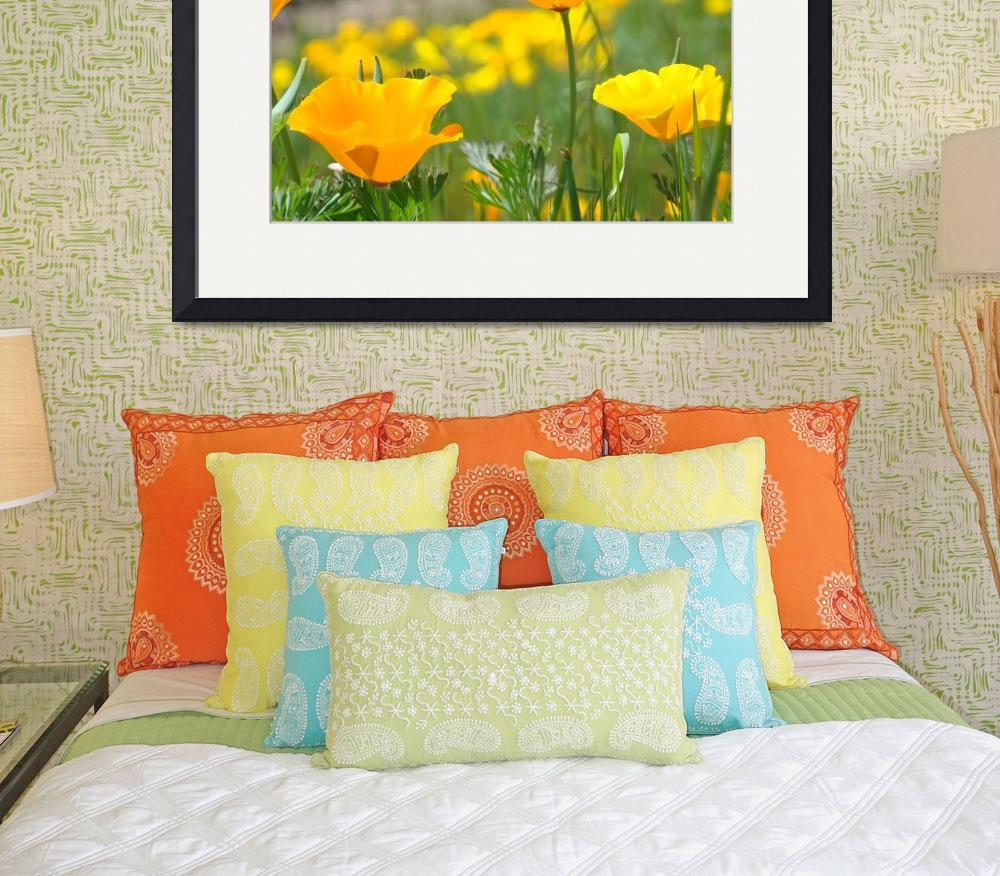 """Spring Flower Meadow 11 Poppies Art Prints&quot  (2009) by BasleeTroutman"