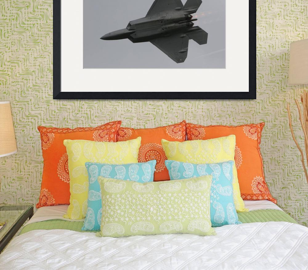 """F-22 Raptor&quot  (2008) by ColinBody"