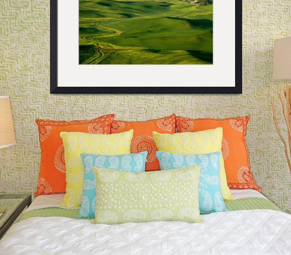 """Palouse Spring&quot  (2011) by Dawsonimages"