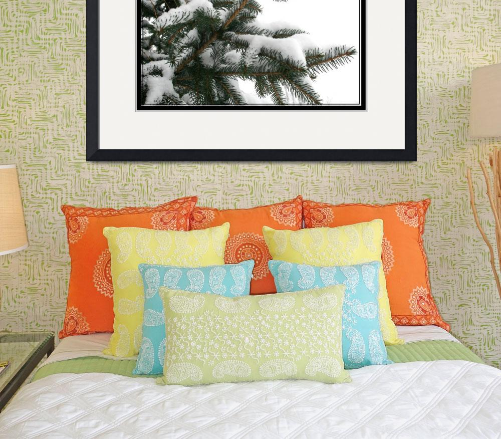 """winter pine&quot  (2008) by sherryswest"