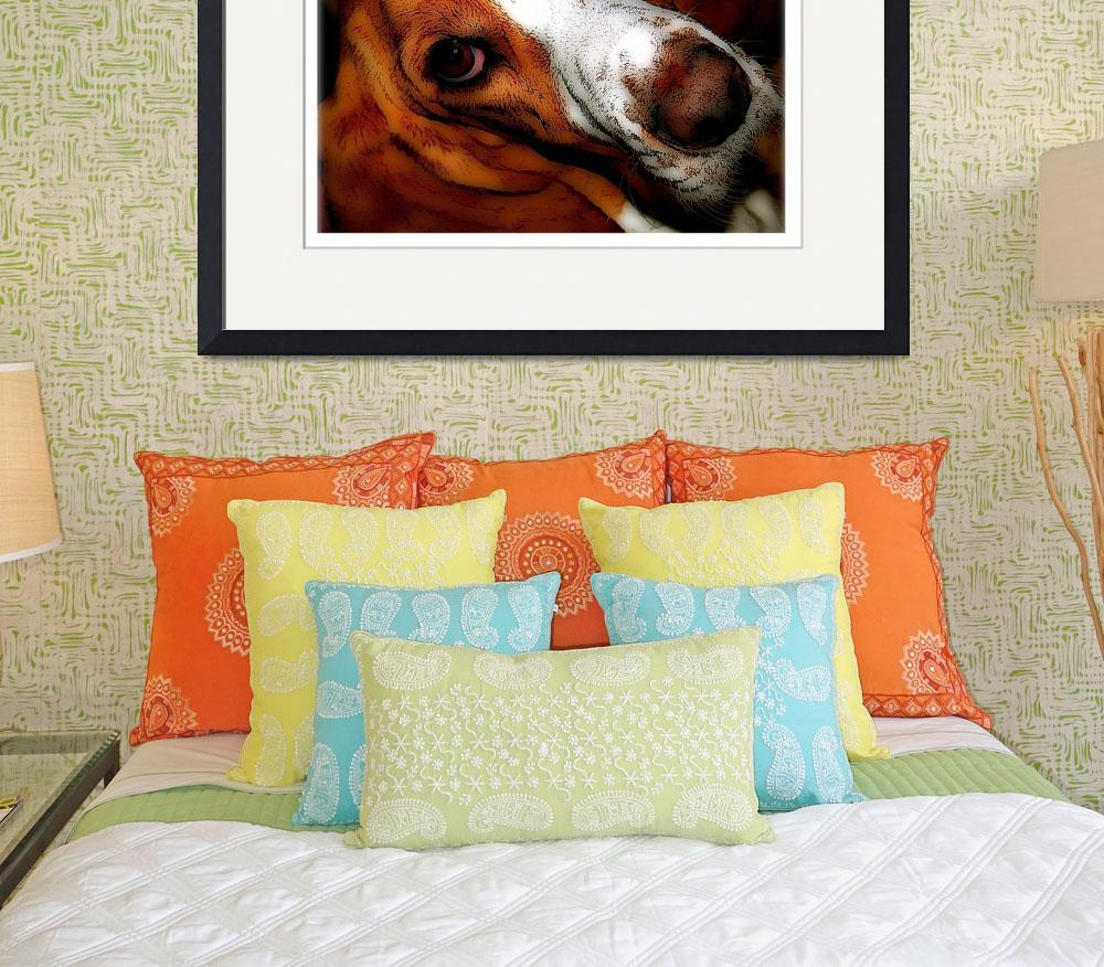 """Hound Dog Eyes&quot  by Alea"