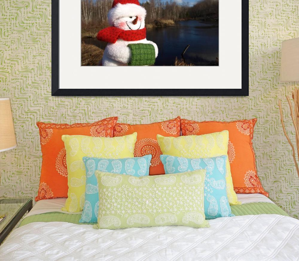 """Snowman waiting for Christmas 10&quot  (2008) by Albertphoto"