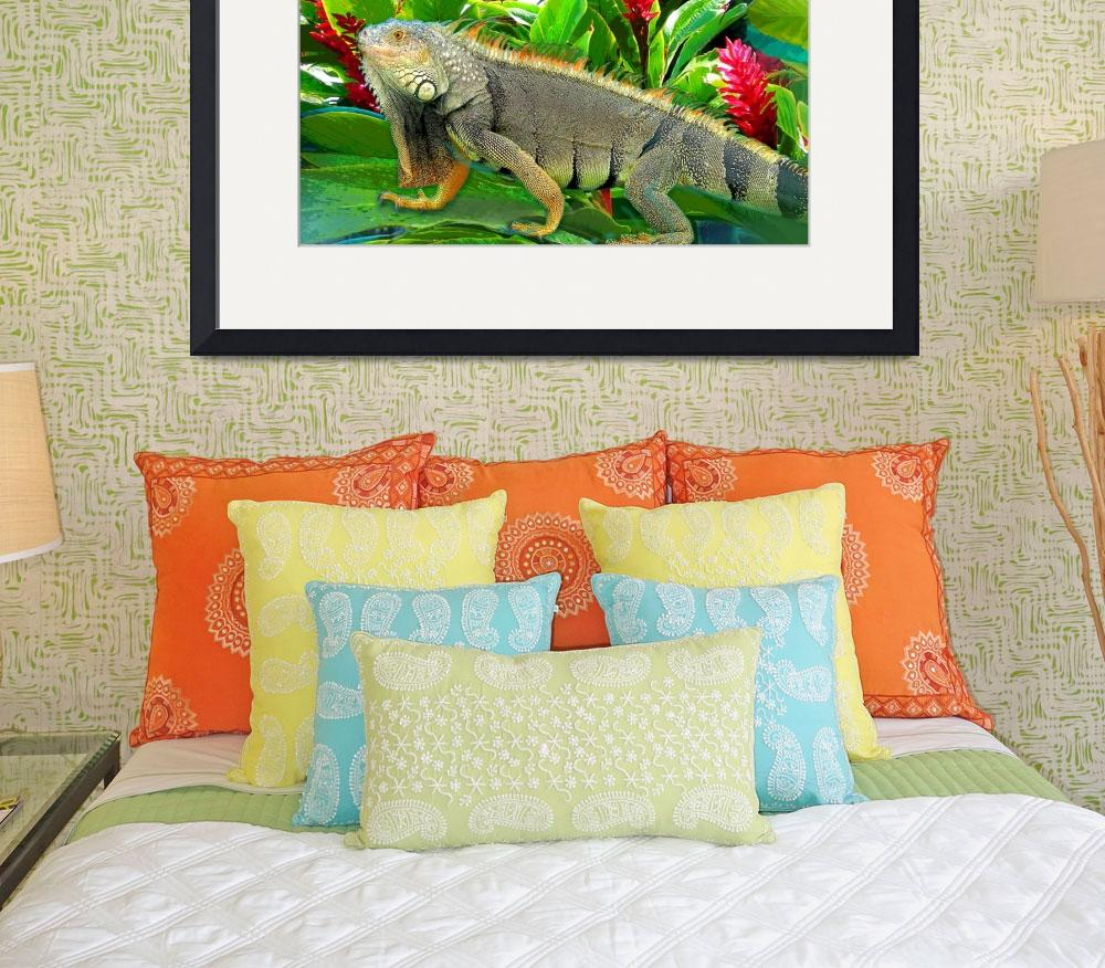 """Iguana&quot  (2008) by PHOTOSRUS"