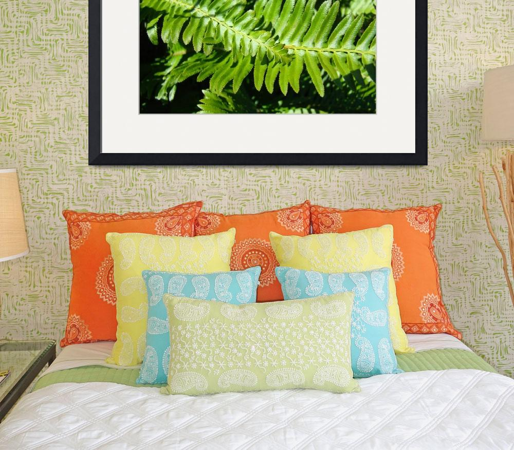 """Forest Ferns Art Prints Green Nature Fern&quot  (2014) by BasleeTroutman"